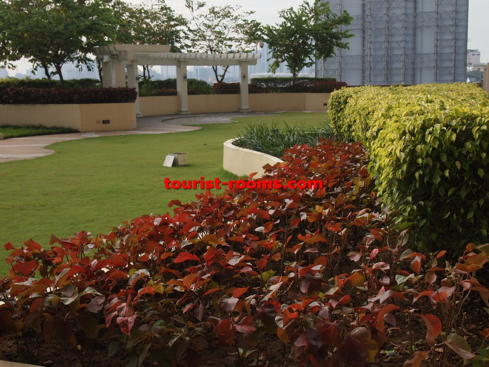 GARDEN AND RED LEAVES AT GATEWAY GARDEN HEIGHTS,GATEWAY GARDEN HEIGHTS,MANILA APARTMENTS FOR RENT,APARTMENT NEAR BONI MRT STATION FOR RENT,APARTMENT NEAR FORUM ROBINSONS MALL FOR RENT,APARTMENT AT MANDALUYONG FOR RENT,MANDALUYONG APARTMENT,MANDALUYONG APARTMENT FOR RENT